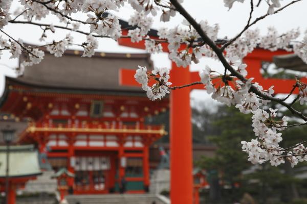 kyoto_2012ms_002.JPG