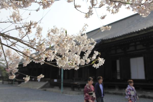 kyoto_2012ms_050.JPG